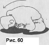 """Рис. 60 -  Джузеппе Раглионе """"Ки-Айкидо. Путь объединения сознания и тела"""" - 9) Ки Тайсо. Тренировка здоровья -  электронная библиотека, книги по Айкидо, на неофициальном сайте Ки Айкидо в Москве"""